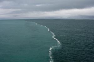 Чем отличается морская вода от пресной?